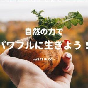 無肥料栽培とは。私が家庭菜園で、無農薬・肥料も使わない栽培を始めた理由