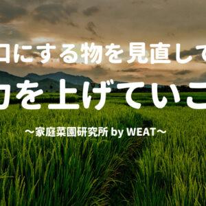 今日、何を食べたら良いのだろう。私が米作りに興味を持った理由