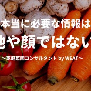え!国産って安全じゃないの!?海外の人は食べない日本の野菜